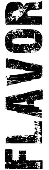 flavor-big-logo